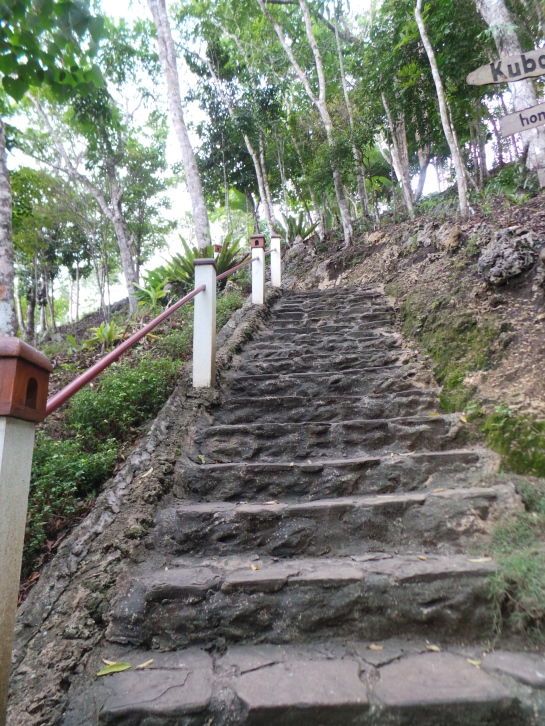 248 Steps