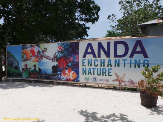 Anda Enchanting Nature