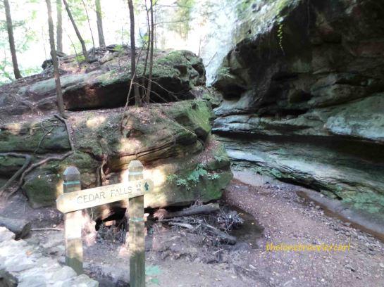 Trail to Cedar Falls